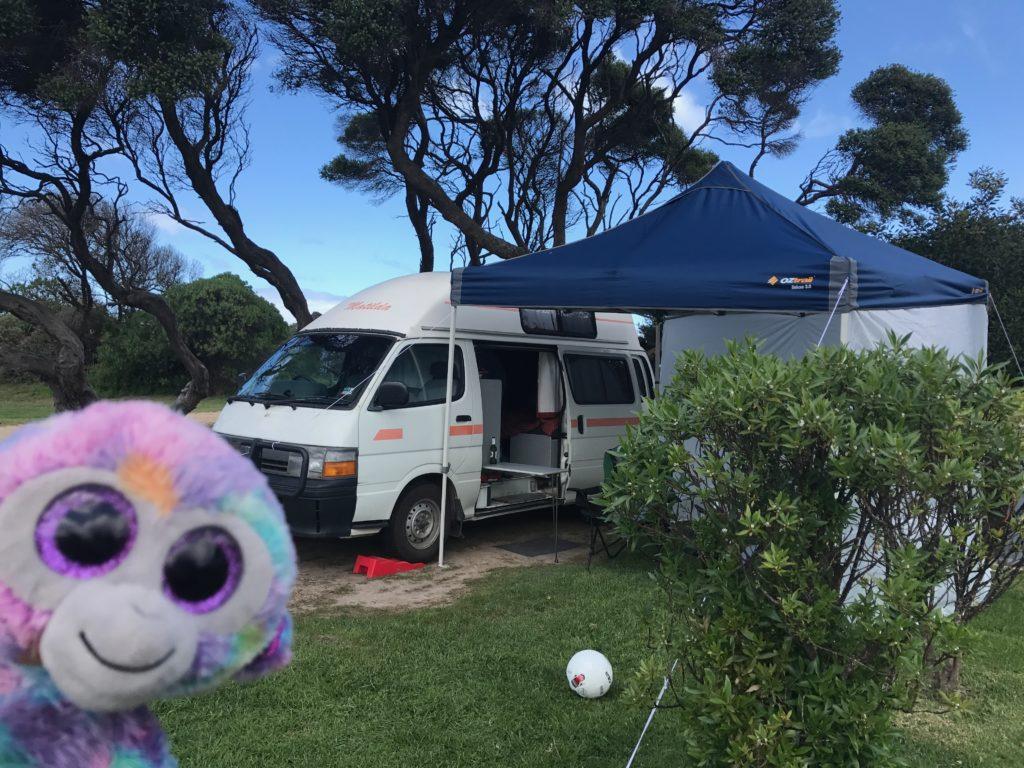 3 Day Itinerary to Anglesea, Victoria, Australia   Minky's