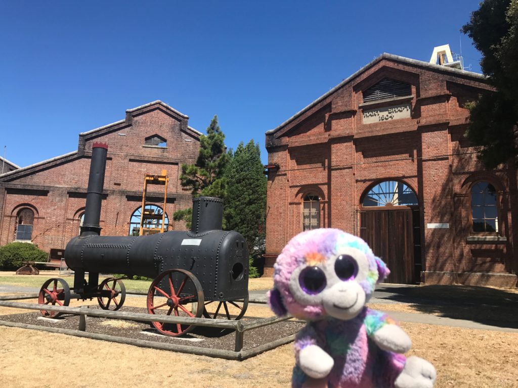 3 Day Itinerary to Launceston, Tasmania | Minky's Day Out